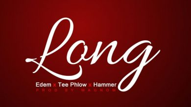 Edem Long  390x220 - Edem feat Teephlow & Da Hammer - Long (Prod. by Magnom)