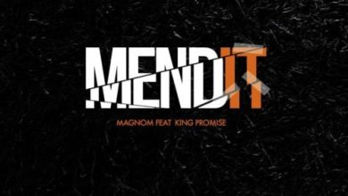 mend it 390x220 - Magnom ft King Promise - Mend It (Prod. by Magnom)