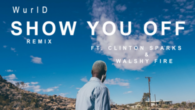 Photo of Wurld ft Clinton Spark & Walshy Fire – Show You Off (Remix)
