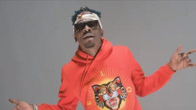 Shatta Nobody video 390x220 - Shatta Wale - Nobody Go Talk (Official Video)