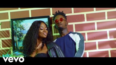 Photo of Efya ft. Mr Eazi – Mamee (Official Video)