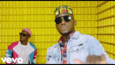 Photo of DJ Spinall ft. Dotman – Omoge (Official Video)