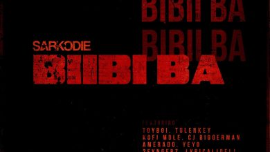 Photo of Sarkodie feat. (Lyrical Joe, Tulenkey, Kwame Dame, Kofi Mole, Toy Boi, Yeyo, Amerado, 2 Fyngers, OBKAY & CJ Biggerman) – Biibi Ba