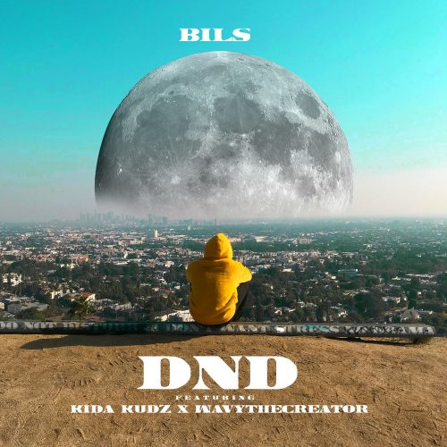 DND Cover image 500x500 - Bils feat. Kida Kudz & Wavythecreator - D.N.D