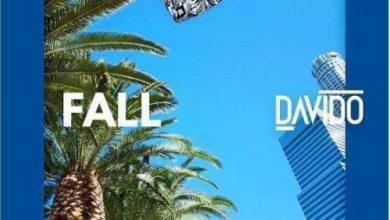 DAvido fall remix 390x220 - Davido feat. Busta Rhymes & Prayah - Fall (Remix)