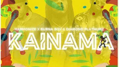 Harmonize Kainama cover art  390x220 - Harmonize ft. Burna Boy & Diamond Platnumz - Kainama (Prod. by Master Garzy)