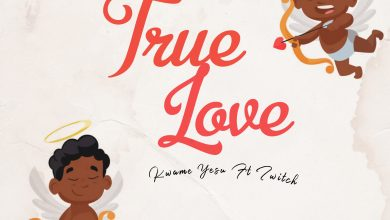 Photo of Kwame Yesu feat. Twitch – True Love (Prod. by Quamina MP)
