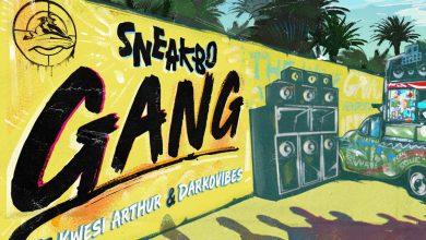 Photo of Sneakbo ft Darkovibes & Kwesi Arthur – Gang