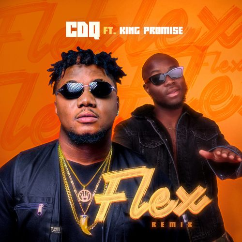 picardHsoF5T 500x500 - CDQ ft King Promise - Flex (Remix)