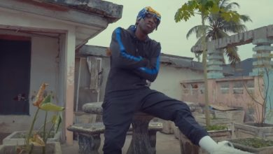 Dee Moneey video 390x220 - Dee Moneey ft. E.L - Atse (Official Video)
