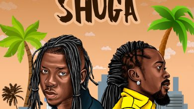 Photo of Stonebwoy ft. Beenie Man – Shuga