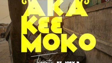 Photo of Trigmatic ft. Joey B – Aka K33 Moko (Prod. by Genius Selection)