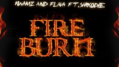 Photo of Kwamz & Flava ft. Sarkodie – Fire Burn