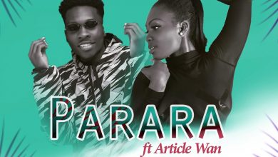 Pam Official Parara 390x220 - Pam Official ft. Article Wan - Parara (Prod by Article Wan)