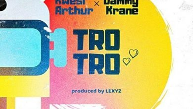 Trotro cover art 390x220 - Kwesi Arthur x Dammy Krane - Trotro (Prod. by Lexyz)