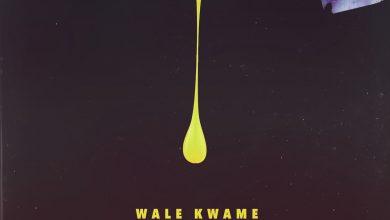 wale kwame davido kwesi cover 390x220 - Wale Kwame ft. Davido & Kwesi Arthur - All Over You (Prod. by Shizzi)