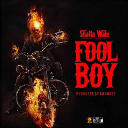 Fool Boy 500x500 - Shatta Wale - Fool Boy (Buffalo Diss)(Prod. by Da Maker)