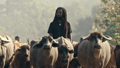 Rocky Dawuni Elevation BTS 390x220 - Rocky Dawuni - Elevation (Official Video)