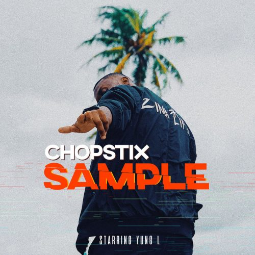 chopstix sample 500x500 - Chopstix ft. Yung L - Sample