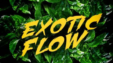 exotic flow 390x220 - Omar Sterling - Exotic Flow (Prod. by Killmatic)