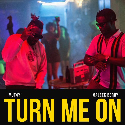 mut4y artwork 500x500 - Mut4y ft. Maleek Berry - Turn Me On