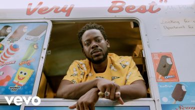Adekunle Gold young 390x220 - Adekunle Gold - Young Love (Official Video)
