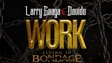 Larry Gaaga work artwork 390x220 - Larry Gaaga ft. Davido - Work (Living In Bondage)