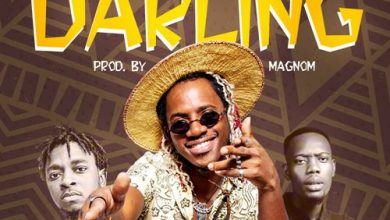 Photo of Sheldon The Turn Up ft. Magnom & Tulenkey – Darling