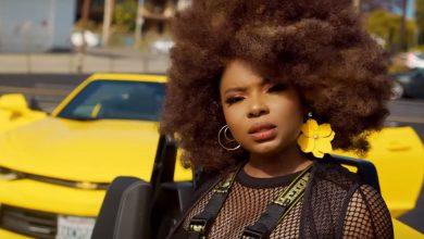 Yemi Alade vibe vid 390x220 - Yemi Alade Releases 5th Studio Album 'Empress'