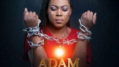joyce adam nana 390x220 - Joyce Blessing - Adam Nana (Prod. by Kaywa)