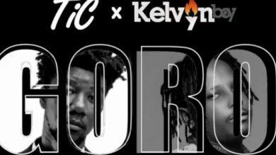 tic kelvynboy 390x220 - Tic ft. Kelvyn Boy - Goro (Prod By Samuel G)
