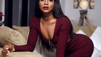 Photo of Focus on Malaria and Typhoid Fever, It's more deadly than Coronavirus –  Seyi Shay laments