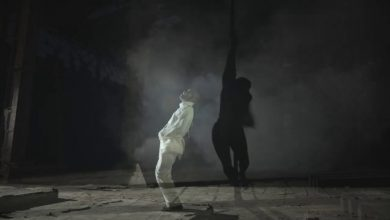 Photo of Brymo – Stripper + White Lines (Official Video)