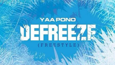Photo of Yaa Pono – Defreeze (Freestyle) (Prod. by Undabeat)