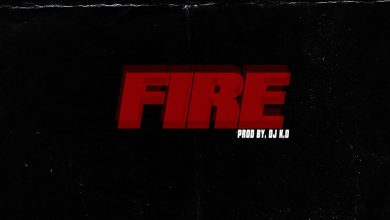 guru fire art 390x220 - Guru - Fire ft Criss Waddle (Prod. by DJ K.O)