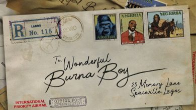 Photo of Lyrics: Burna Boy – Wonderful