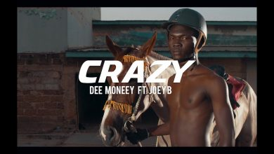 crazy 390x220 - Dee Moneey - Crazy ft. Joey B (Official Video)