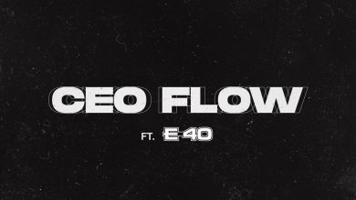 Sarkodie CEO Flow ft E 40 www dcleakers com  mp3 image 390x220 - Lyrics : Sarkodie - CEO Flow ft. E-40