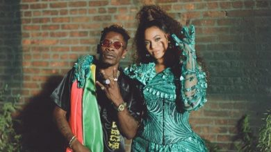Shatta Wale beyonce 1 390x220 - How Ghanaian Celebrities reacted to Beyonce & Shatta Wale's 'Already' Video