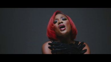 Efya the one video 390x220 - Efya – The One ft. Tiwa Savage (Official Video)
