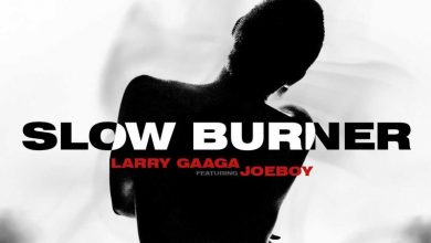 Slow Burner artwork 390x220 - Larry Gaaga ft. Joeboy - Slow Burner