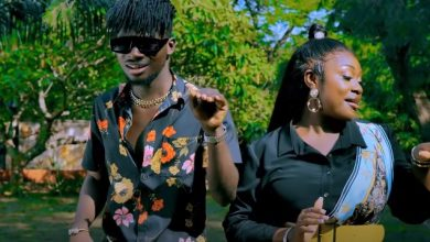 Photo of Emelia Brobbey – Makoma ft Kuami Eugene (Official Video)