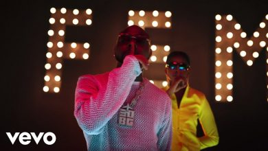 Photo of Davido – FEM (Official Video)