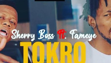 Photo of Sherry Boss – Tokro ft. Fameye
