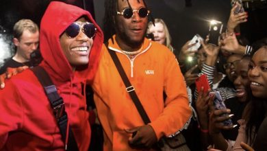 Burna Boy and Wizkid 390x220 - Wizkid - Ginger ft. Burna Boy