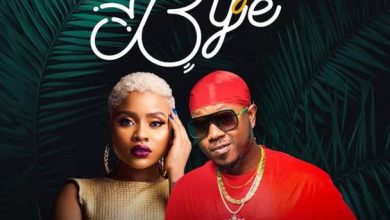 Photo of Flowking Stone – Bye Bye ft. Adina