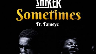 Shaker sometimes cover art 390x220 - Shaker - Sometimes ft. Fameye