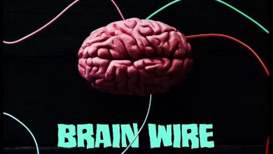 Shatta Wale Brain Wire cover art 390x220 - Shatta Wale - Brain Wire (Freestyle)