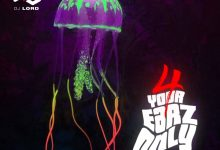DJ Lord 4 Your Earz Only Volume 11 cover art 220x150 - DJ Lord - 4 Your Earz Only (Volume 11)