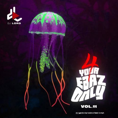 DJ Lord 4 Your Earz Only Volume 11 cover art 500x500 - DJ Lord - 4 Your Earz Only (Volume 11)